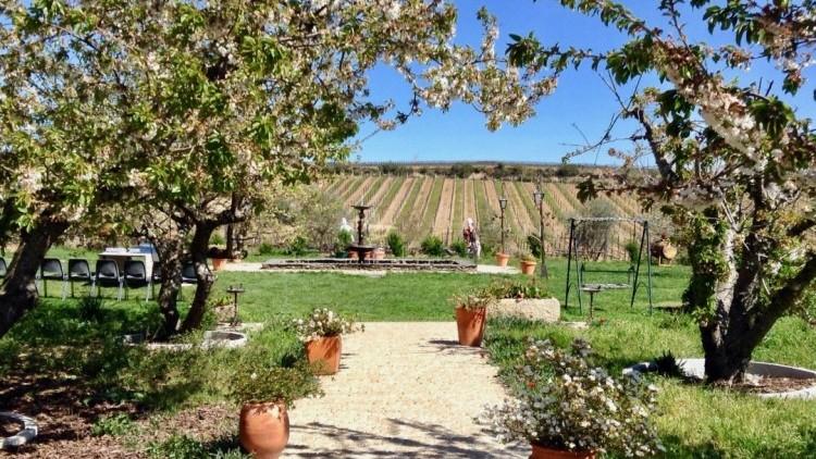Pinhão Tour - with lunch and visit at Quinta da Avessada